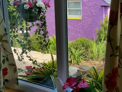 Rose cottage looking out